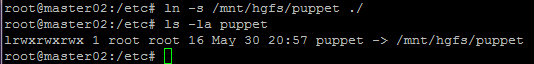 Replacing the Puppet Directory with a Softlink to the Mounted Filesystem.
